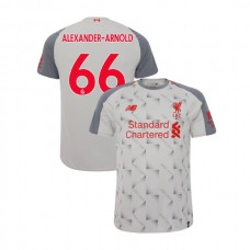 Liverpool 2018-19 Third #66 Trent Alexander-Arnold Light Gray Authentic Jersey